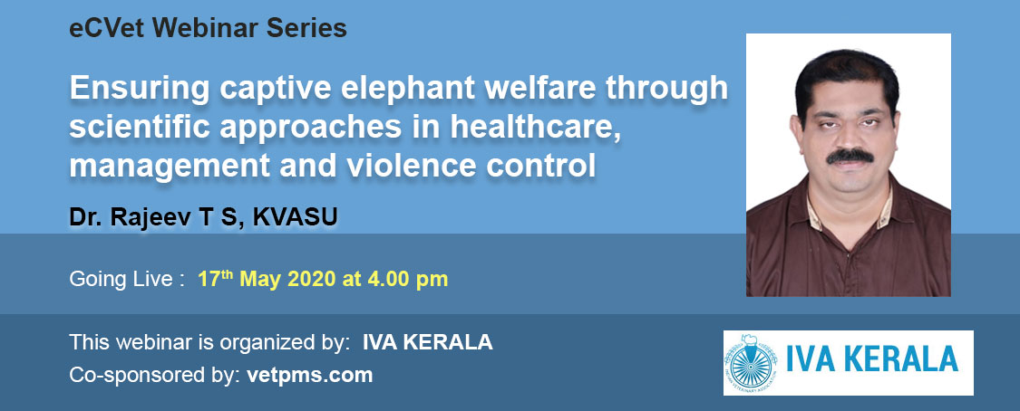 Ensuring captive elephant welfare through scientific approaches in healthcare, management and violence control