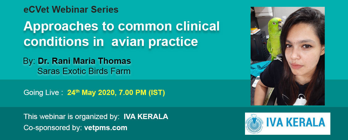 Approaches to common clinical conditions in avian practice