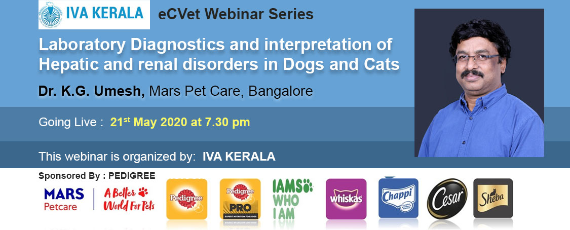 Laboratory Diagnostics and interpretation of Hepatic and renal disorders in Dogs and Cats